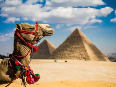 パエーリャはアラブ起源